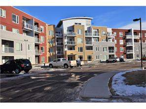 Apartment East Lake Industrial Airdrie real estate