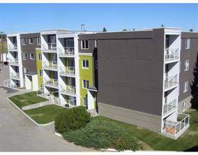 Apartment Greenview Calgary real estate Listing