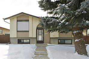 63 Castledale WY Ne, Calgary, Detached homes Listing