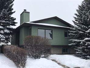 Vista Heights Detached home in Calgary