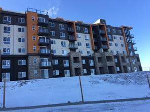 Apartment Kincora Calgary real estate