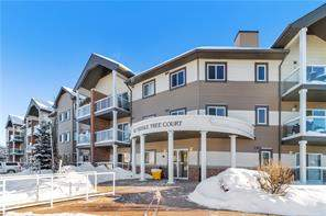 Apartment Saddle Ridge Calgary real estate