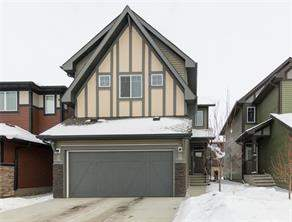Saddle Ridge Calgary Detached homes Listing