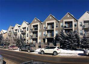 Apartment Midnapore Calgary real estate