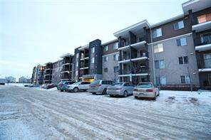 #205 7110 80 AV Ne, Calgary, Saddle Ridge Apartment