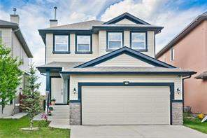 Saddle Ridge Calgary Detached homes