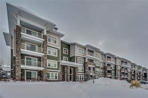 Apartment Mahogany Calgary real estate