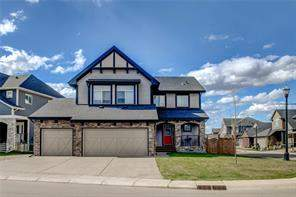 Rainbow Falls Chestermere Detached homes Listing