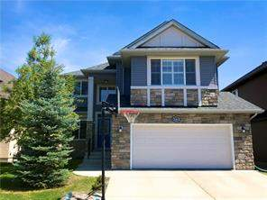 Evergreen Calgary Detached homes