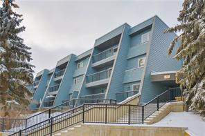 #5204 27 Grier PL Ne, Calgary, Greenview Apartment