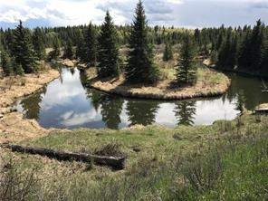 10 Acres Horse Creek Road in  Rural Rocky View County-MLS® #C4173538