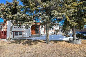 Rundle Calgary Detached homes Listing