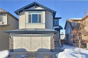 Detached New Brighton Calgary real estate Listing