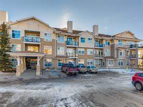 Apartment Arbour Lake Calgary real estate