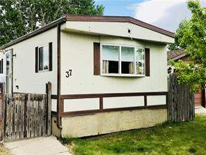 37 Spring Haven CL Se, Airdrie