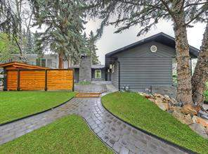 60 Massey PL Sw, Calgary  T2V 2G5 Mayfair