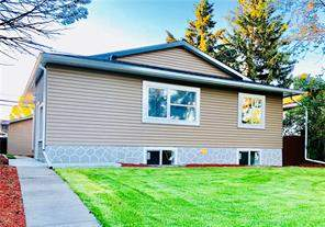 259 Dovercliffe WY Se, Calgary  Listing