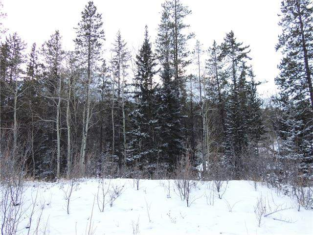 MLS® #C4103344 - 142 Cairns Ld in Three Sisters Canmore