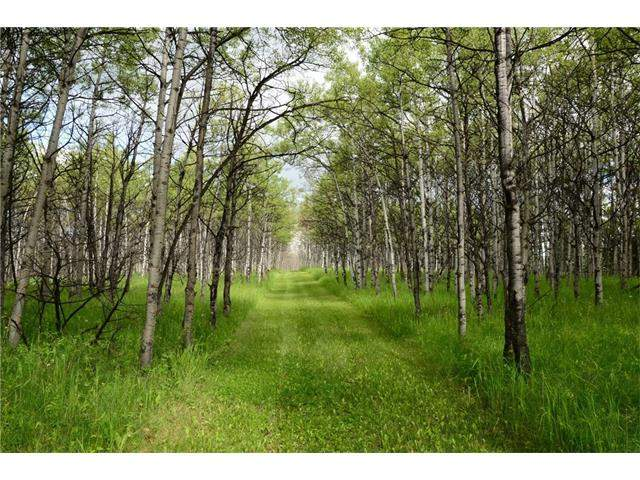 MLS® #C4113528 - 251258 Sibbald Creek Tr in None Rural Rocky View County, Land
