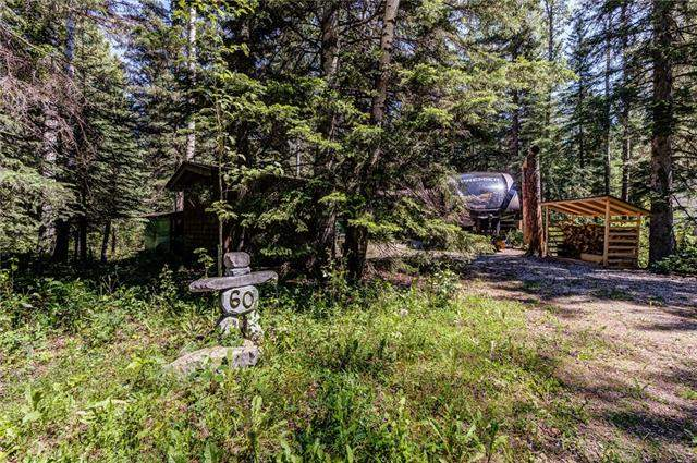 MLS® #C4145641 - 60 Bergen Springs Bv in None Rural Mountain View County, Detached