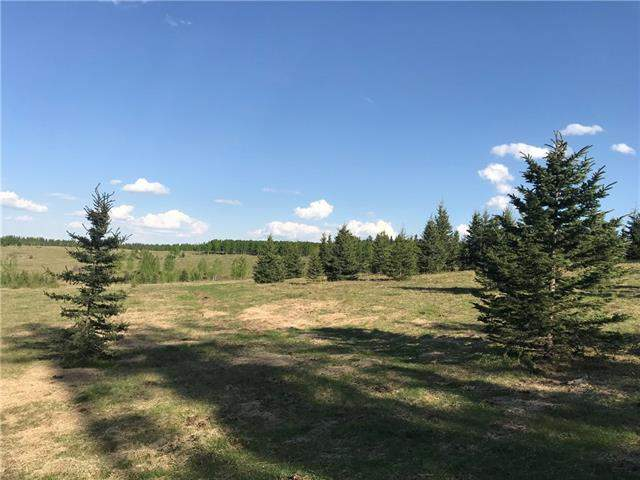 MLS® #C4184964® 156 Acres South Of Jamieson Road in None Rural Bighorn M.D. Alberta