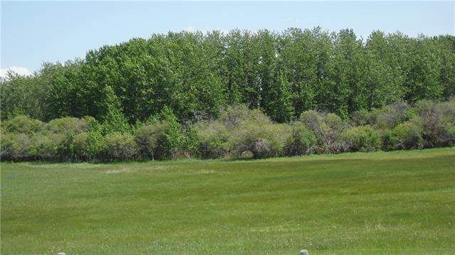 80 Street  226 Ave in None Rural Foothills M.D. MLS® #C4189465