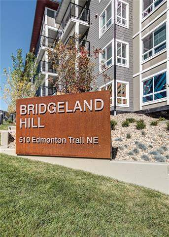#212 510 Edmonton Tr Ne, Calgary  Bridgeland/Riverside homes for sale