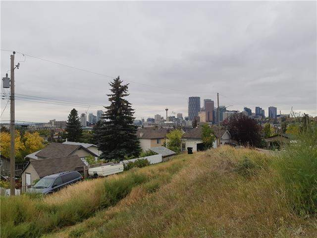 1012 Drury AV Ne, Calgary  Bridgeland homes for sale