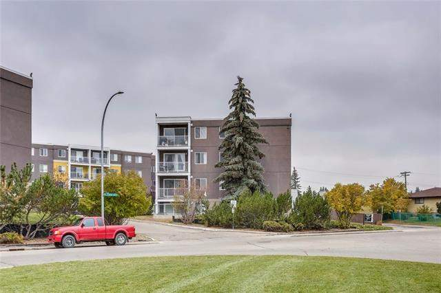 #302 4455d Greenview DR Ne, Calgary Greenview real estate, Apartment Greenview homes for sale