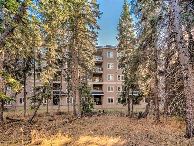 #206 10 Discovery Ridge CL Sw, Calgary Discovery Ridge real estate, Apartment Discovery Ridge homes for sale
