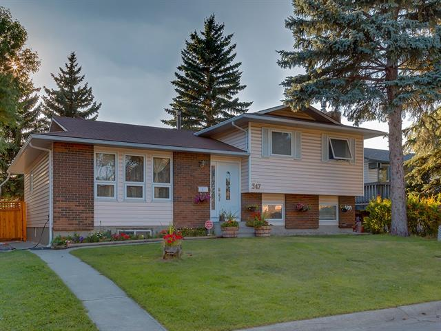 347 Templewood PL Ne in Temple Calgary MLS® #C4215975