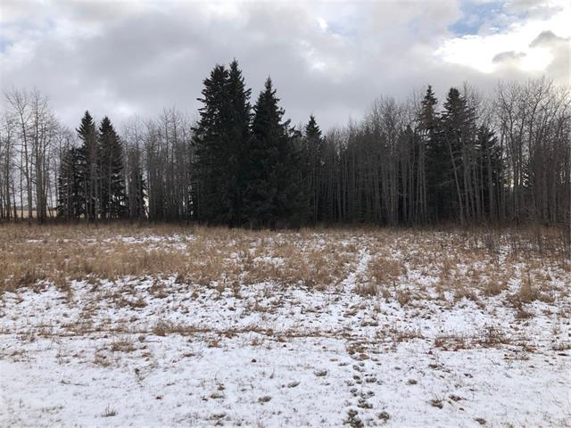 Twp 324 Rge RD 3.0, Rural Mountain View County None real estate, Land Rural Mountain View County homes for sale