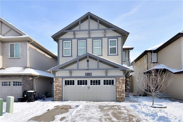 163 Skyview Point RD Ne, Calgary, Skyview Ranch real estate, Detached Skyview Ranch homes for sale