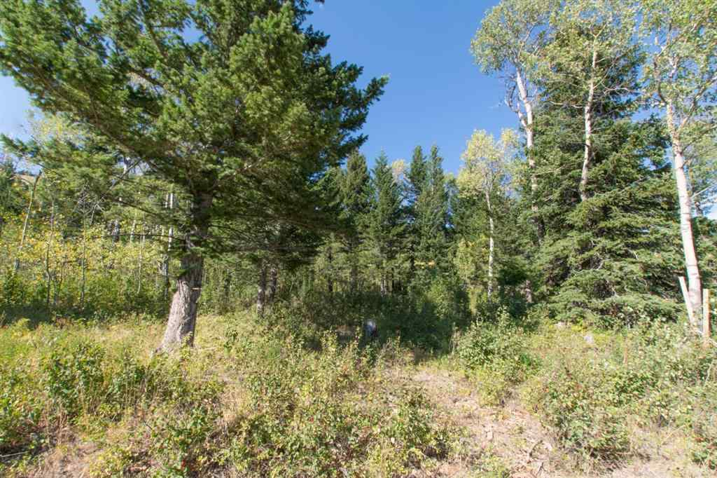 MLS® #A1028691 - 49 Kananaskis Way  in NONE Coleman, Land Open Houses