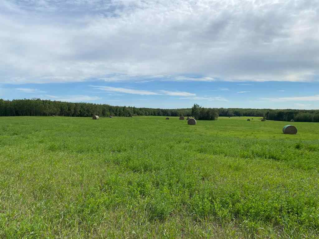 MLS® # A1034828 -  Twp ship Road 540 and RR 113 Acres  in NONE Rural Two Hills No. 21, County of, Land Open Houses
