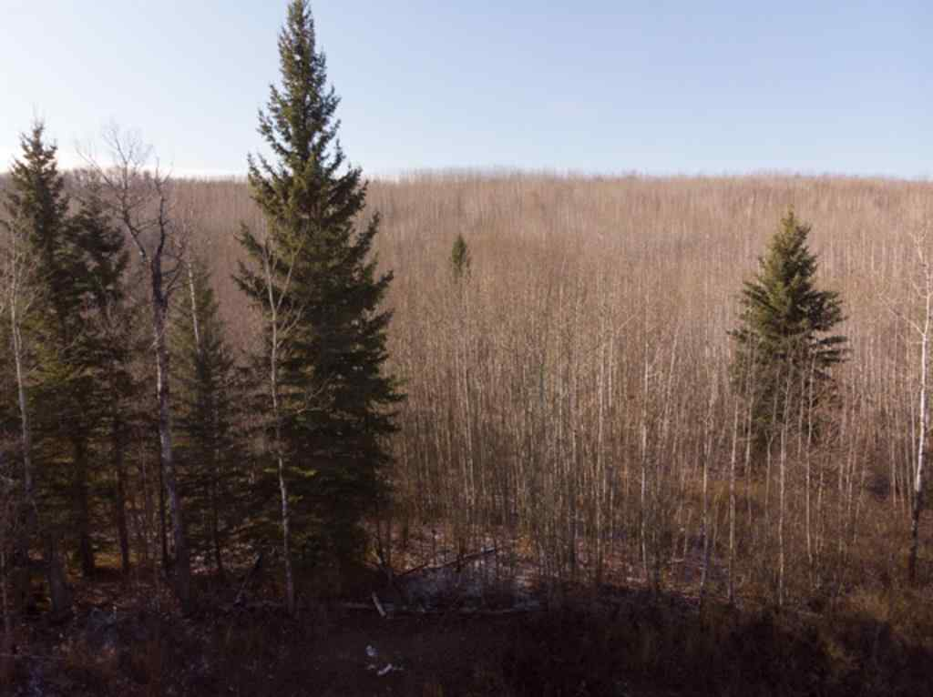 MLS® # A1042961 - PT OF NW 9-66-22-W4   in Athabasca Town Athabasca, Land Open Houses