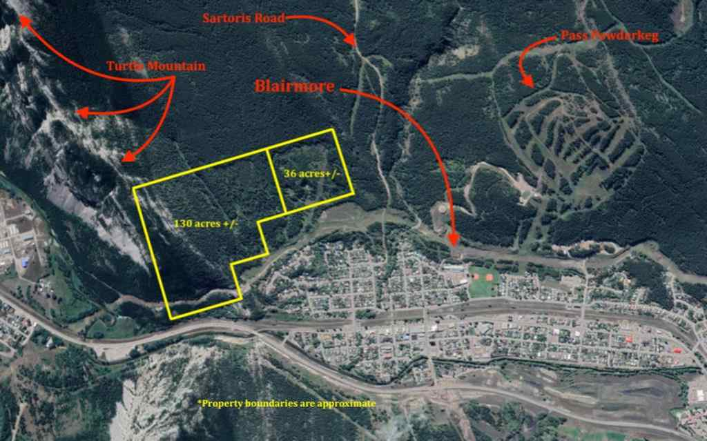 MLS® #A1055892 - . South Blairmore   in NONE Blairmore, Land Open Houses