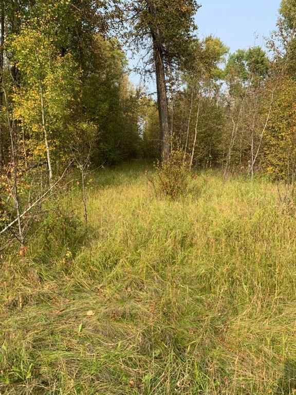 MLS® #A1069974 - ON TOWNSHIP ROAD 452   in NONE Bluffton, Land Open Houses
