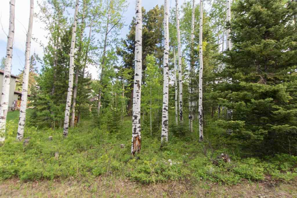 MLS® #A1072159 - 7 Kananaskis Drive  in NONE Coleman, Land Open Houses