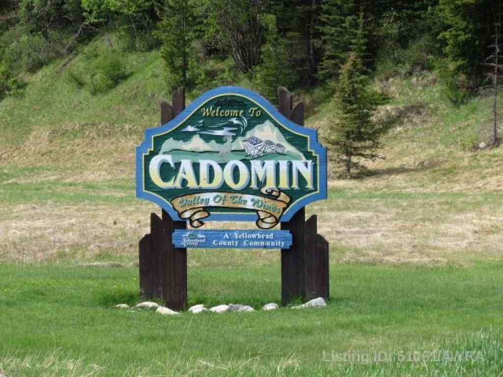 MLS® #AW51061 - 5313 50 STREET CADOMIN   in Cadomin Cadomin, Land Open Houses