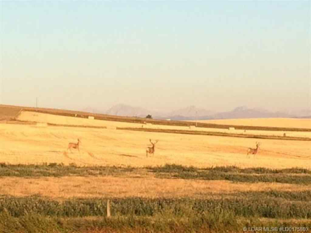 MLS® # LD0175880 - On Range Road 293   in  Rural Pincher Creek No. 9, M.D. of, Agri-Business Open Houses