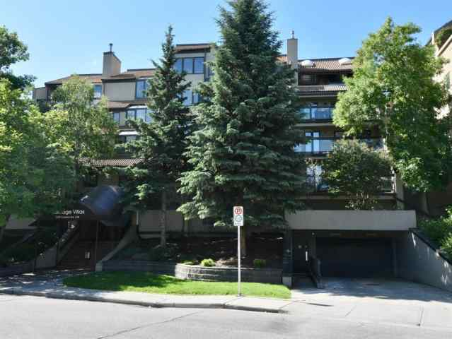 303, 1229 CAMERON Avenue SW in Lower Mount Royal Calgary MLS® #A1009480