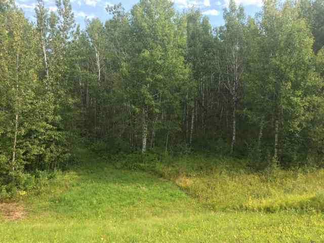 MLS® #A1020964 224002 Township 654 Road T9S 1C4 Rural Athabasca County