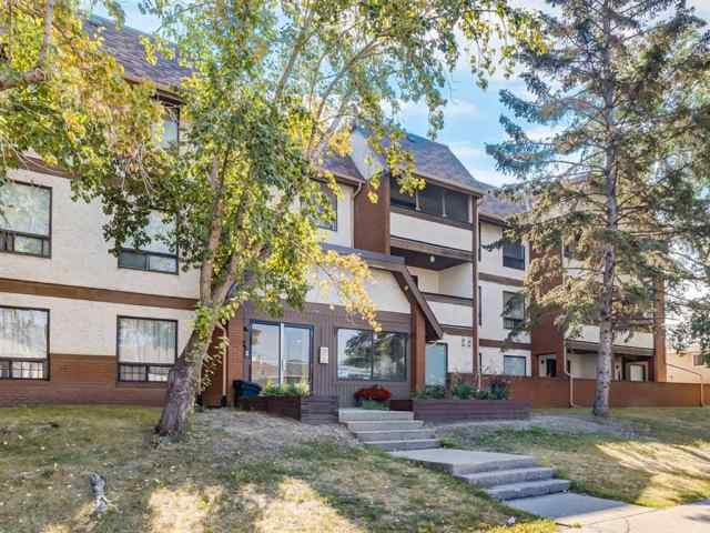 206, 1712 38 Street SE in Forest Lawn Calgary MLS® #A1021328