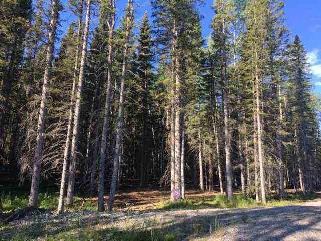 50071 TWP RD 234 Other in Wintergreen_BC Bragg Creek