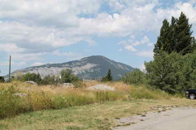 21405 27 Avenue  in NONE Crowsnest Pass MLS® #A1025482