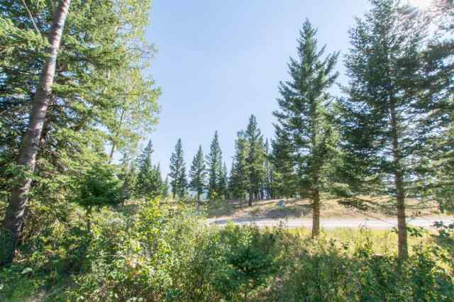 49 Kananaskis Way  in NONE Coleman MLS® #A1028691
