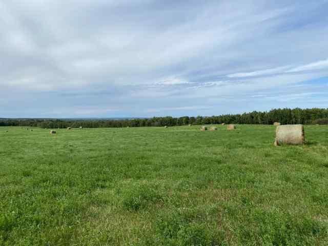 Twp ship Road 540 and RR 113 Acres  in NONE Rural Two Hills No. 21, County of MLS® #A1034828