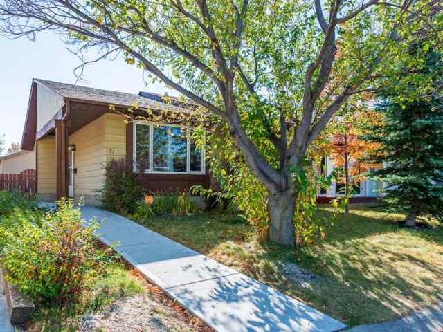 51 Templewood Mews NE in Temple Calgary MLS® #A1039525