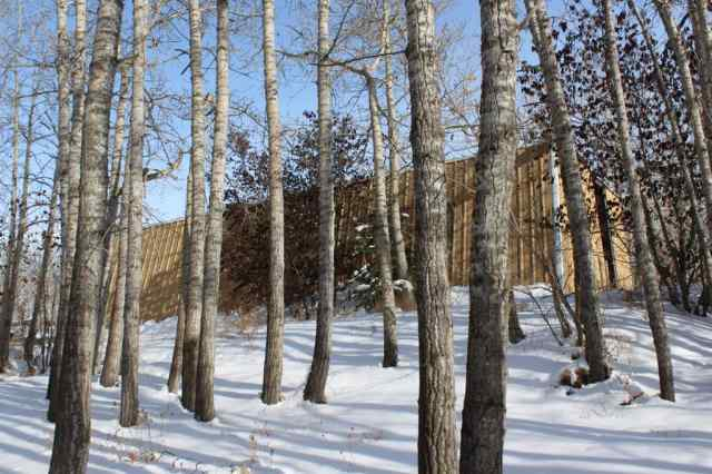 MLS® #A1045276 33131 Meskanaw Road T4C 1A2 Rural Rocky View County